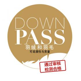 DOWNPASS e.V.'s FIRST TRADE FAIR IN CHINA